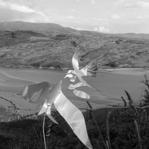 Gwaith Powdwr birds 4